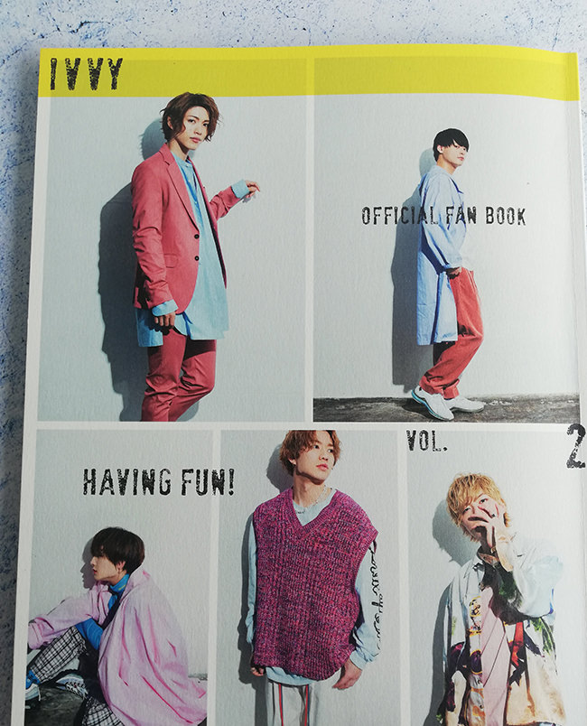 ivvy official fan book 2 表紙